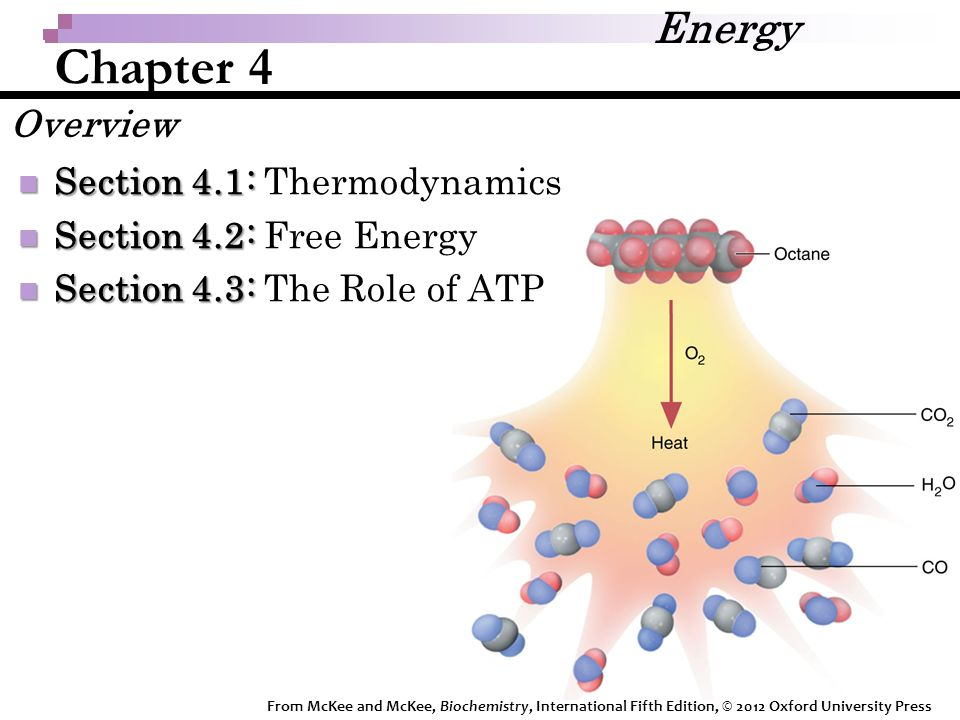 Chapter 4 Section 4.1: Section 4.1: Thermodynamics Section 4.2: Section 4.2: Free Energy Section 4.3: Section 4.3: The Role of ATP Energy Overview From McKee and McKee, Biochemistry, International Fifth Edition, © 2012 Oxford University Press