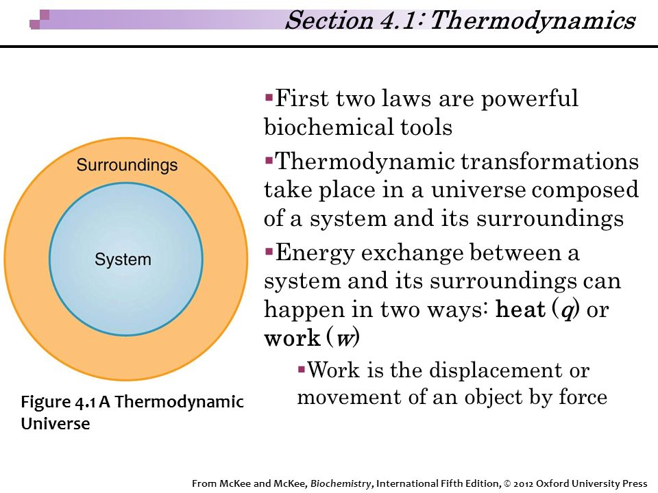 Section 4.1: Thermodynamics  First two laws are powerful biochemical tools  Thermodynamic transformations take place in a universe composed of a system and its surroundings  Energy exchange between a system and its surroundings can happen in two ways: heat (q) or work (w)  Work is the displacement or movement of an object by force Figure 4.1 A Thermodynamic Universe From McKee and McKee, Biochemistry, International Fifth Edition, © 2012 Oxford University Press
