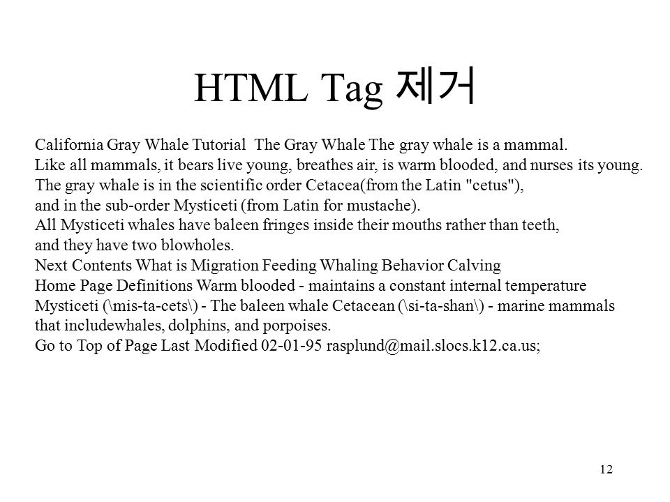 12 HTML Tag 제거 California Gray Whale Tutorial The Gray Whale The gray whale is a mammal.