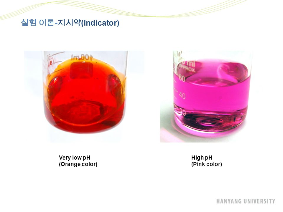 실험 이론 - 지시약 (Indicator) Very low pH (Orange color) High pH (Pink color)
